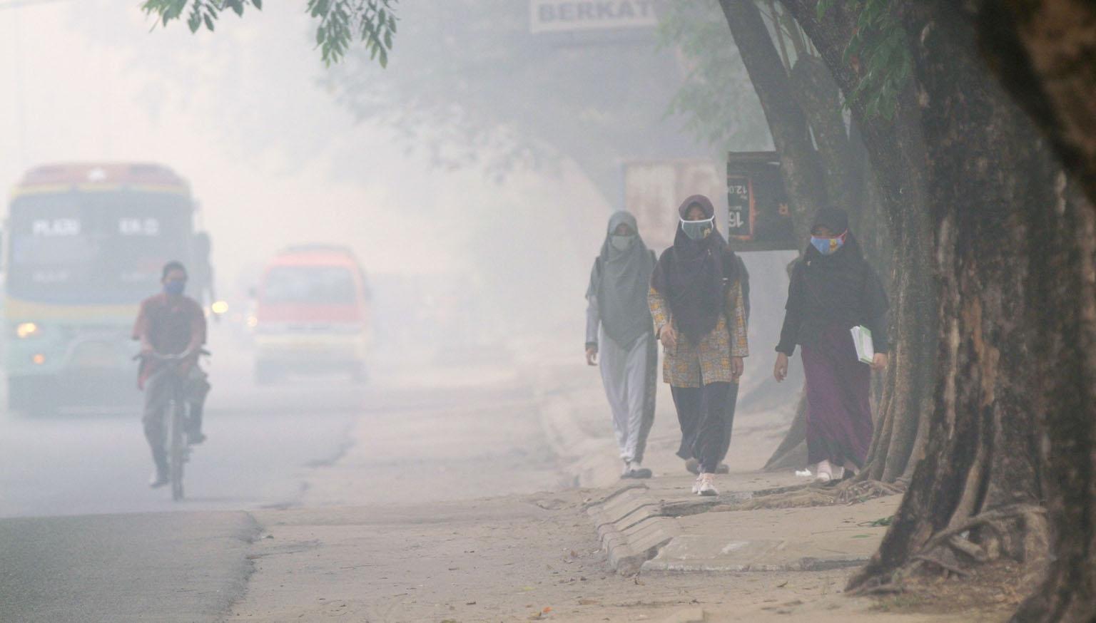 WOODIES – Air Pollution Strikes, Again!