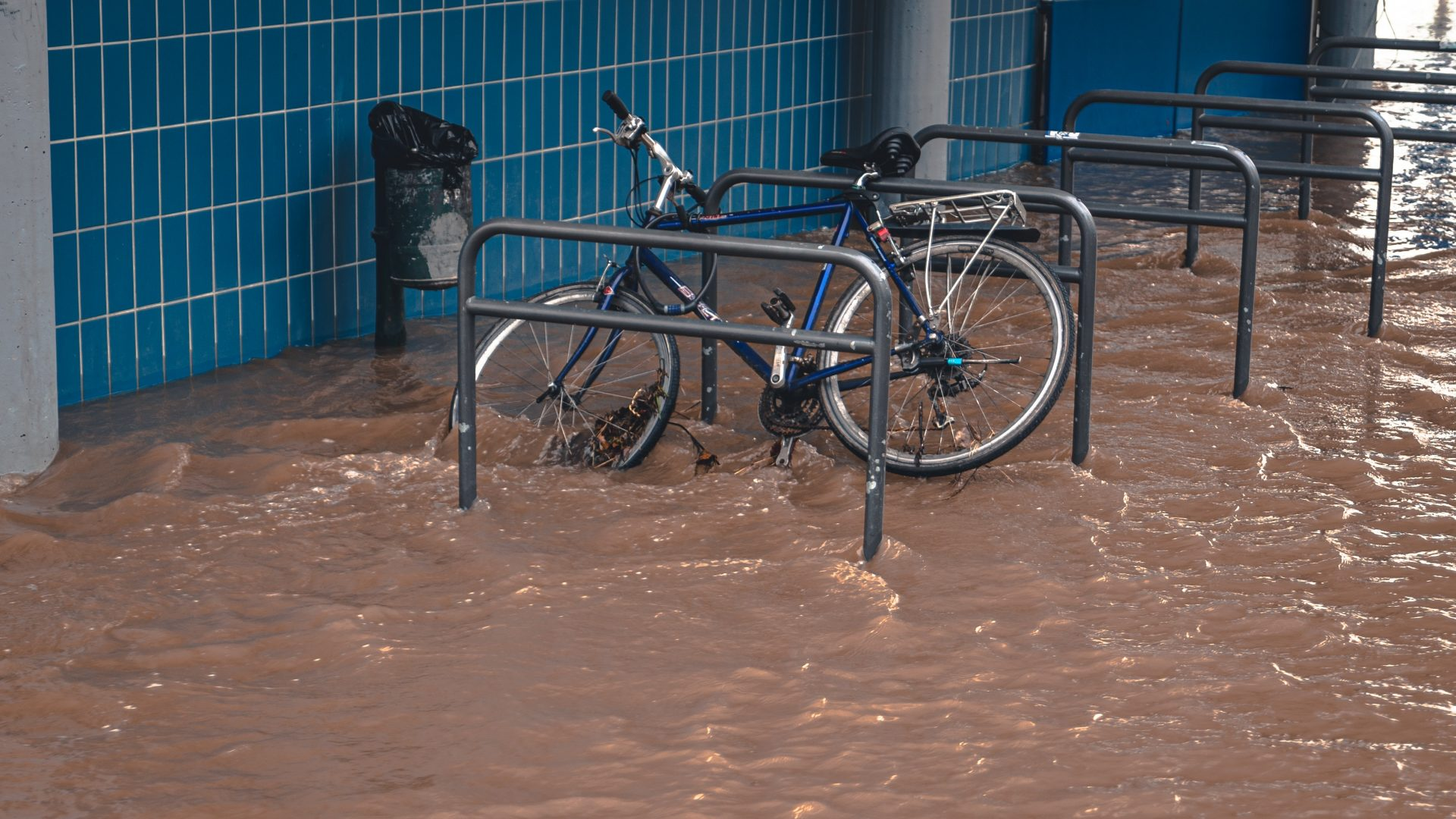 WOODIES – Monsoon Flood